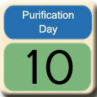 Purification-Day10