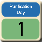 Purification-Day1