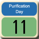 Purification-Day11
