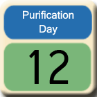 Purification-Day12