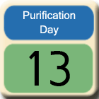 Purification-Day13