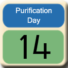Purification-Day14
