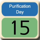 Purification-Day15