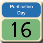 Purification-Day16