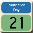 Purification-Day21