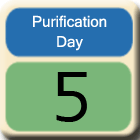 Purification-Day5