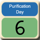 Purification-Day6