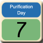 Purification-Day7