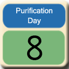 Purification-Day8