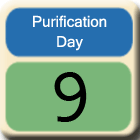 Purification-Day9